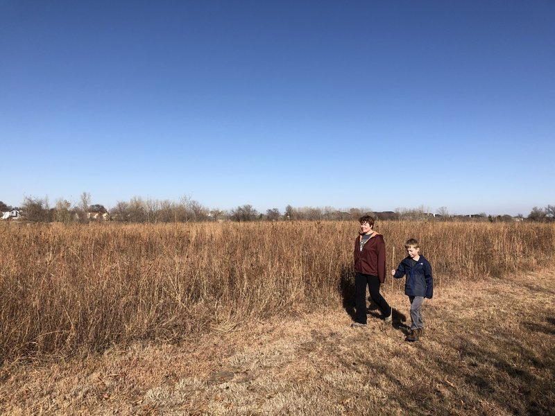 Some of the hike is in the middle of a prairie grass field, a mix of big and little bluestem grasses.