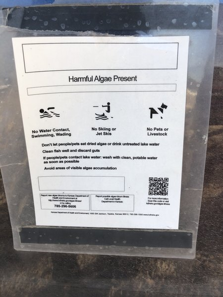 Of all the affected lakes in KS, this is usually one of the first every summer to have dangerous algae blooms, do not get in the water or let your dog in.