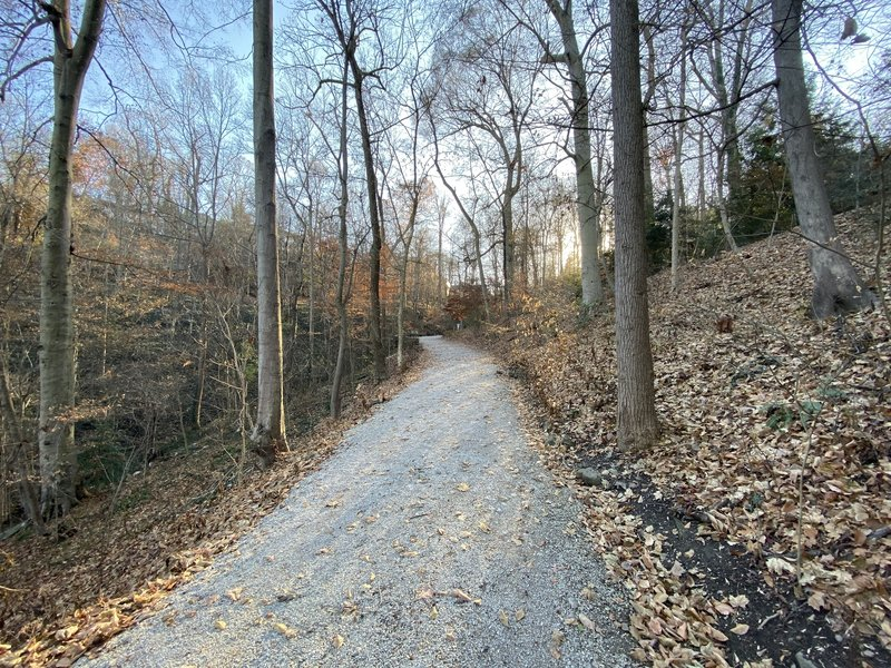 Top of the carriage trail in late fall
