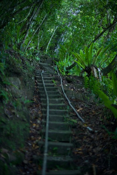 "The stairs and ropes (""ladders"") make this part of the trail difficult. Take your time and enjoy the adventure."