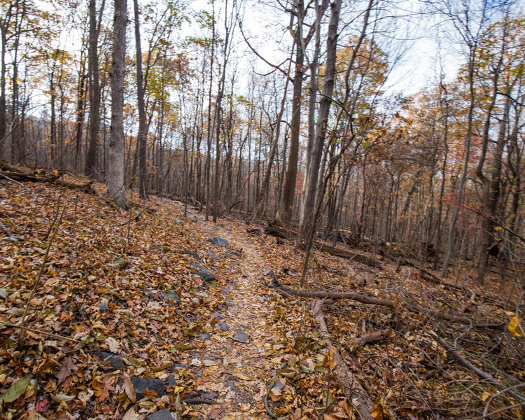 Mid November view of the Raven Rocks Trail.