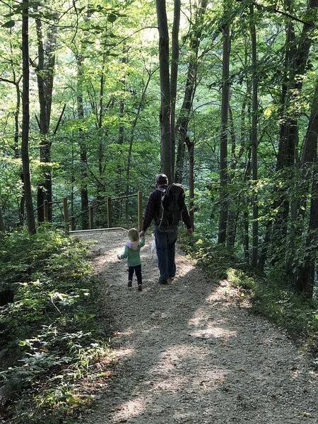 "Grand Ravines – Statema Woodland Trail."" Courtesy of Ottawa County Parks & Recreation."