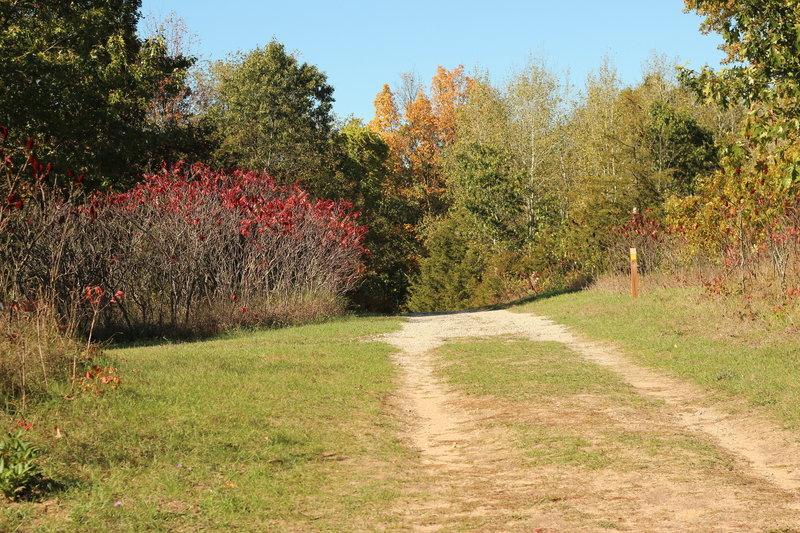 """Bolt entrance doubletrack."""" Photo courtesy of Cascade Charter Township."""