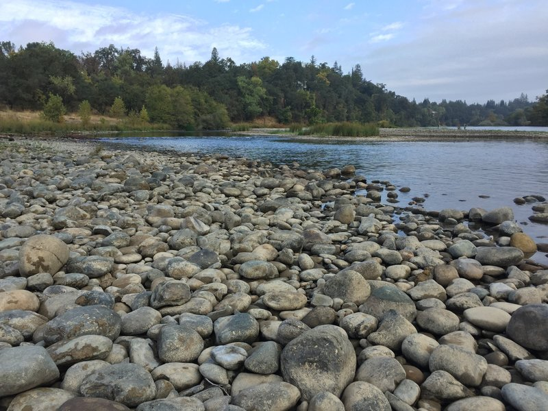 Banks of the American River