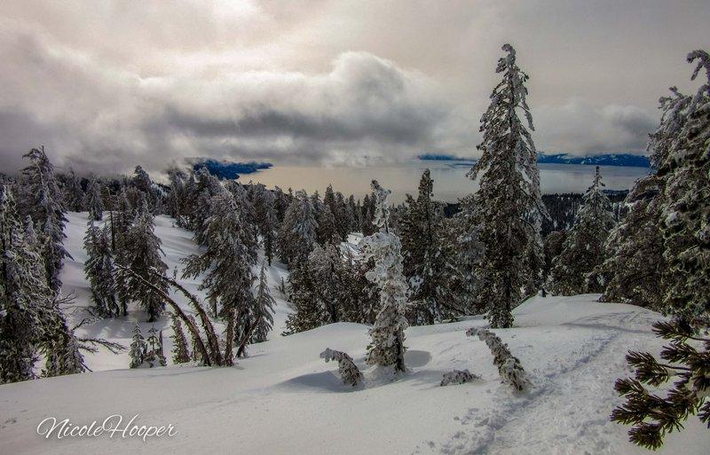 Chickadee Ridge, Lake Tahoe, NV. Jan2019