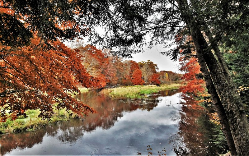 "Pigeon River in Fall"" by Mike Lozon. Photo courtesy of Ottawa County Parks & Recreation."