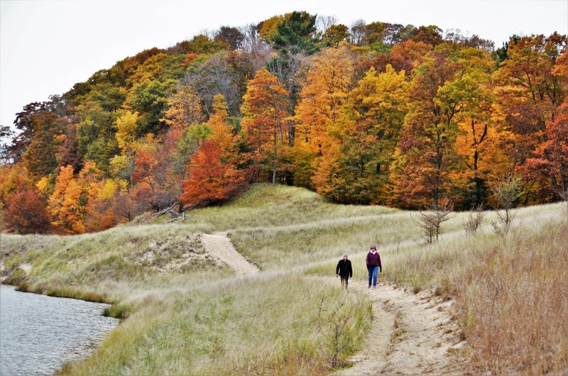 """Lakeside trail in fall"""" by Mike Lozon. Photo courtesy of Ottawa County Parks & Recreation."""