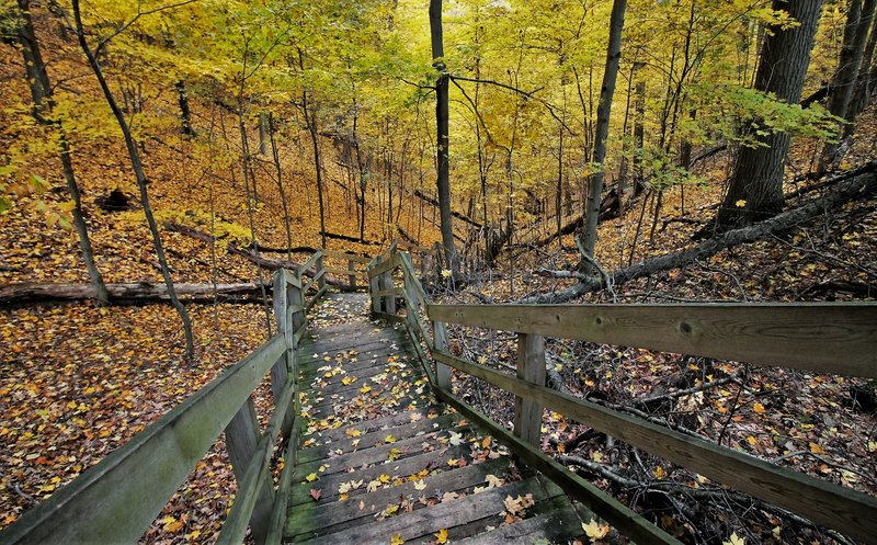 "Steep staircase in the fall"" by Mike Lozon. Photo courtesy of Ottawa County Parks & Recreation."