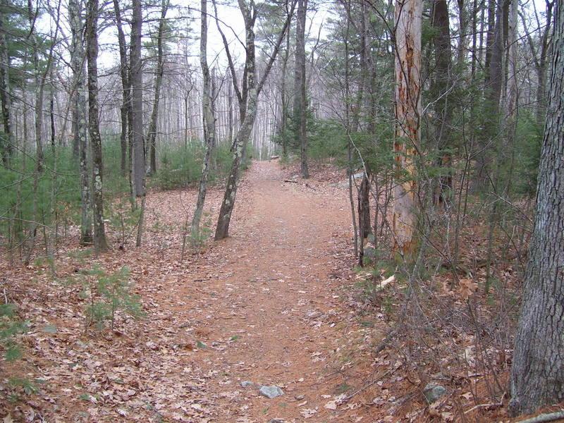 "Undercliff Path near Needham's Crossing"" courtesy of the Lynn Woods Ranger."