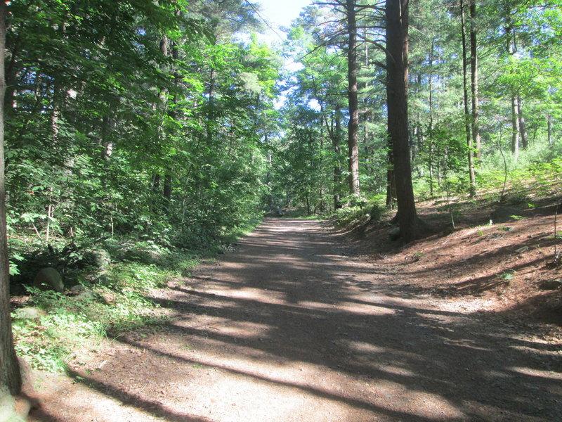 """Waycross Road"""" courtesy of the Lynn Woods Ranger."""
