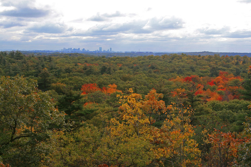 """View from Stone Tower"""" courtesy of the Lynn Woods Ranger."""