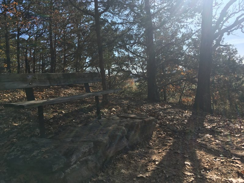 There are several benches along this trail that are great spots for relaxing!