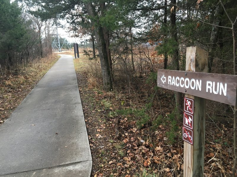 One of the two starting points of Raccoon Run!