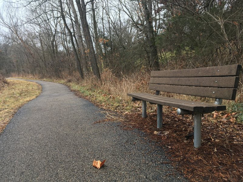 A lovely bench at the midway point.