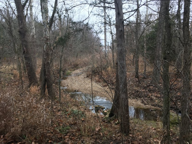 A small creek slightly off trail.