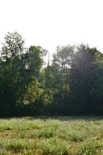 """Lamoreaux Park"""" courtesy of Kent County Parks Department."""