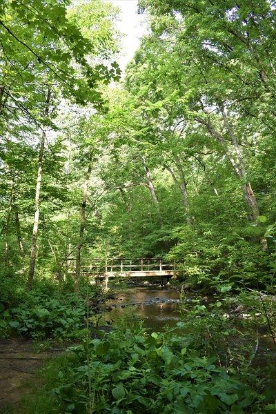 """Seidman Park"""" courtesy of Kent County Parks Department."""
