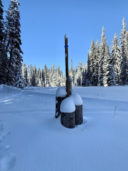 Fresh snowfall on our new trail marker