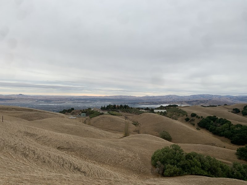 About 100 yd from tower looking out at Livermore Valley