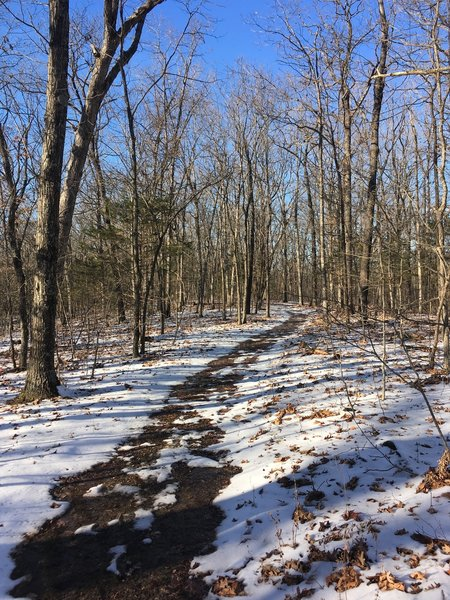 This is what the trail looks like in the winter! December 2019