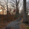 Looking west down the Railroad Bed Trail.