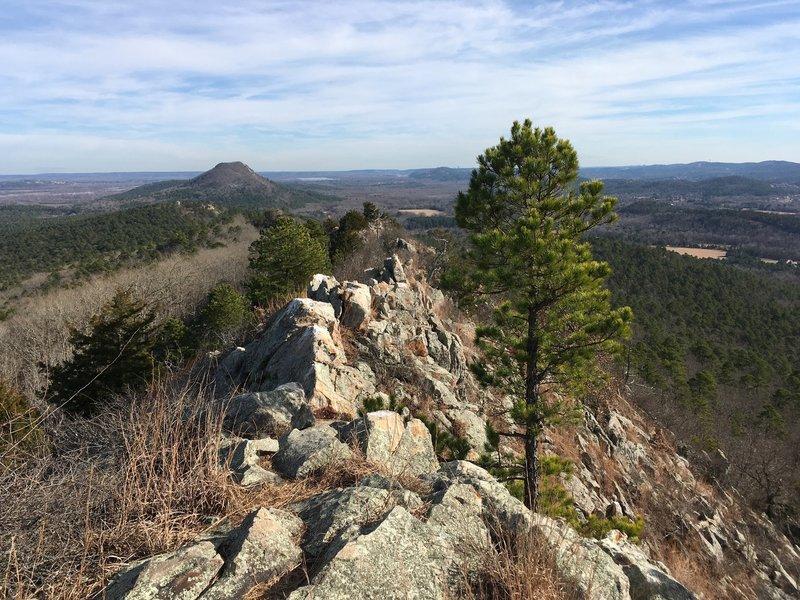 Looking back down the ridge toward pinnacle.