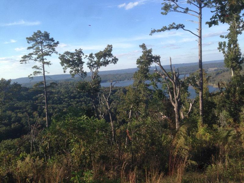 View of Lake Guntersville.