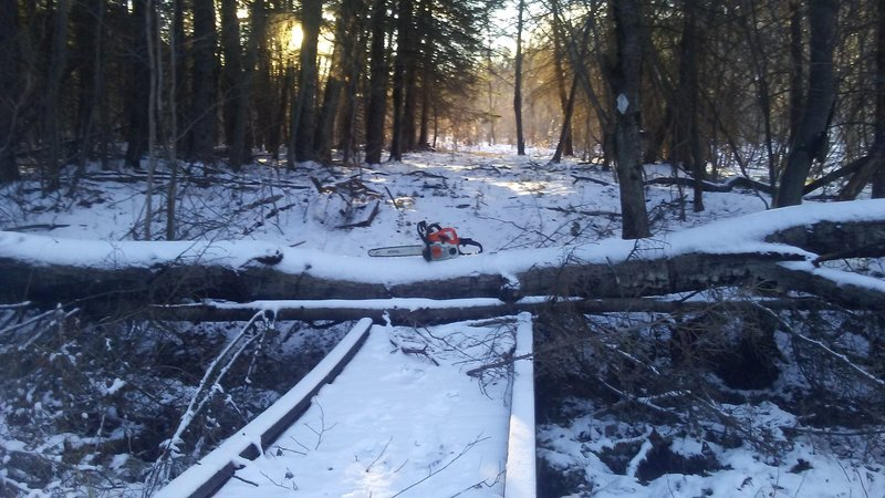 Tree down on one of the many bridges on the TLT.