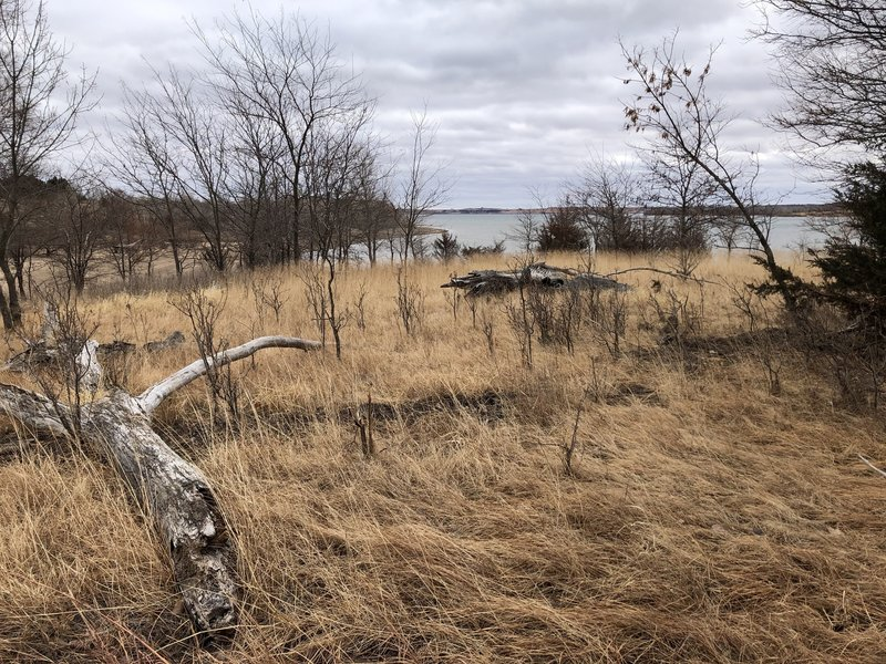 View of the lake from the trail.