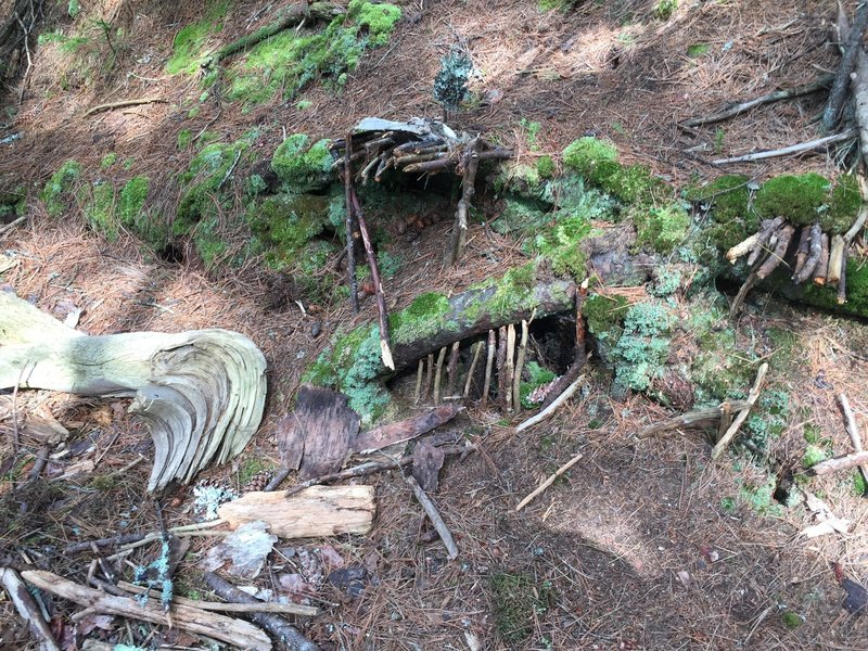 Fairy House alongside trail