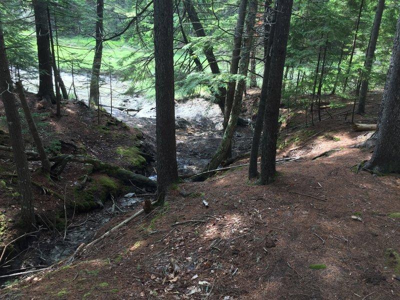 Dry tidal creekbed.