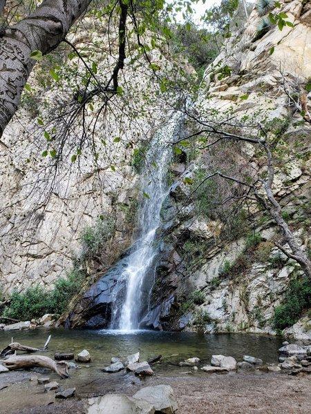 Sturdevant Falls- December 2019- Hooray- WATER!
