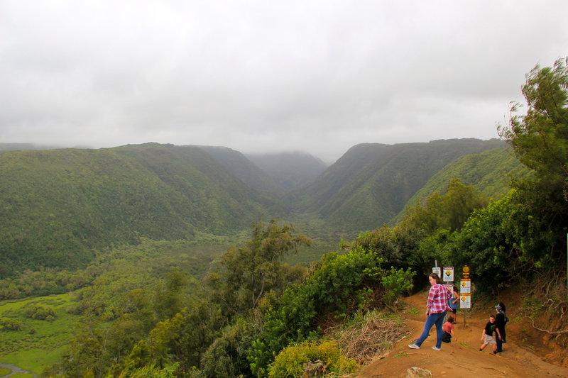 Begin of Awini Trail