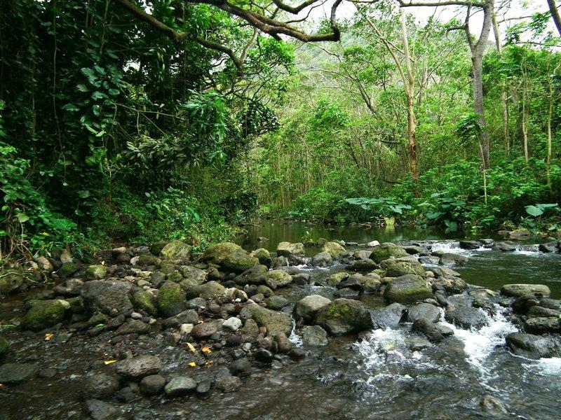 Hawaii Big Island Kona Hilo