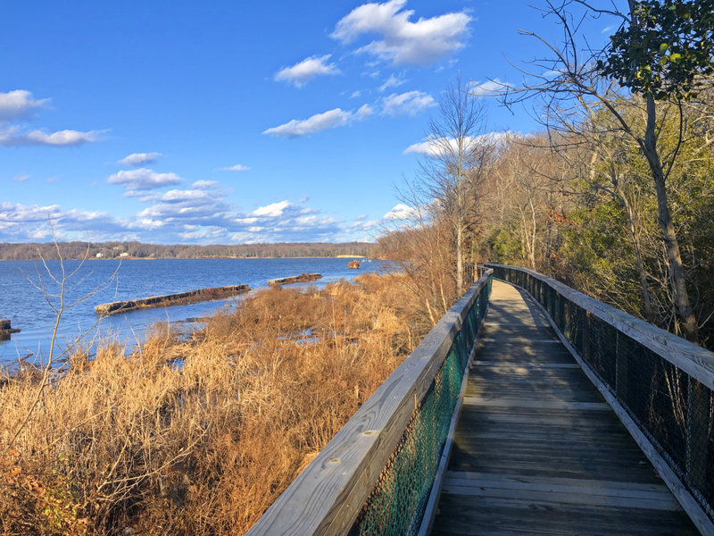 Boardwalk along the bay on the Bayview Trail