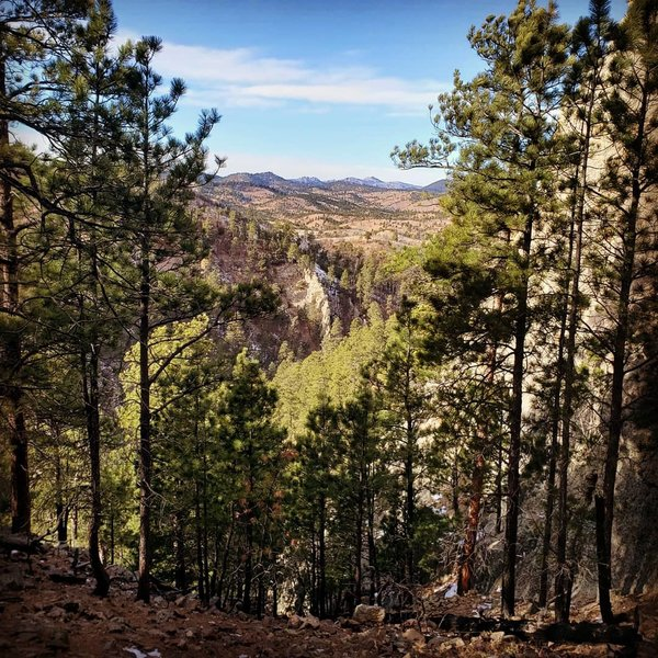 View from top of Lovers Leap trail. Custer State Park