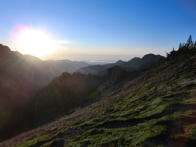 Early morning, on top of the south ridge above Marmot Pass, looking out on Hood Canal.