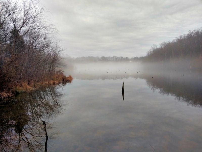 Foggy Lake Mercer on a warm, January day.