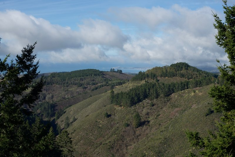 From the North Ridge Trail, you get a good view of Half Moon Bay and the Pillar Point Air Force Station.