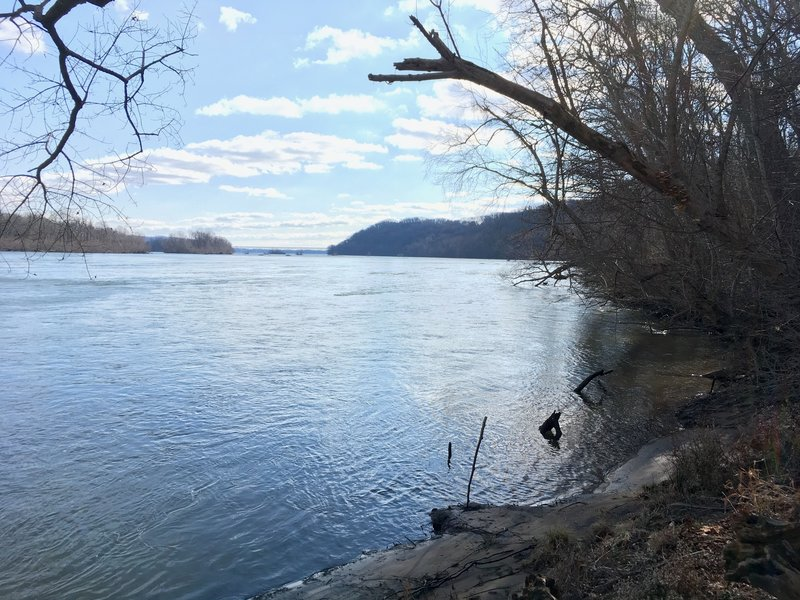 A view of the river from the greenway trail in susquehanna park