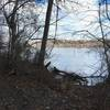 A view of the river from the greenway trail in susquehanna park.