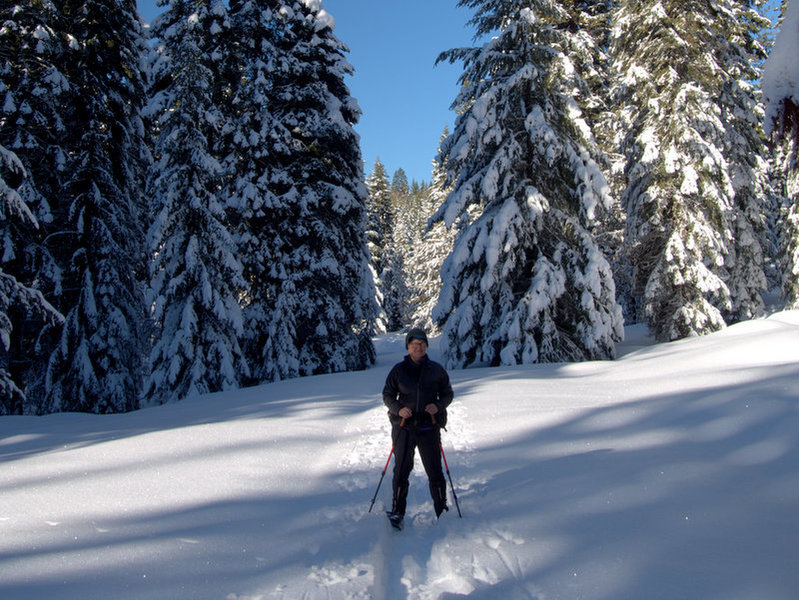 On the McLoughlin Nordic Trail