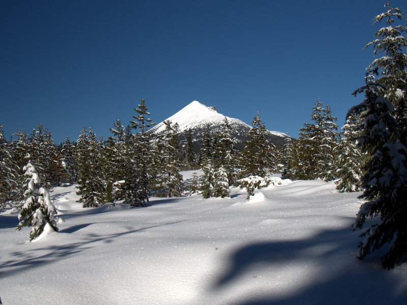 Mount McLoughlin from the Pitt View Trail