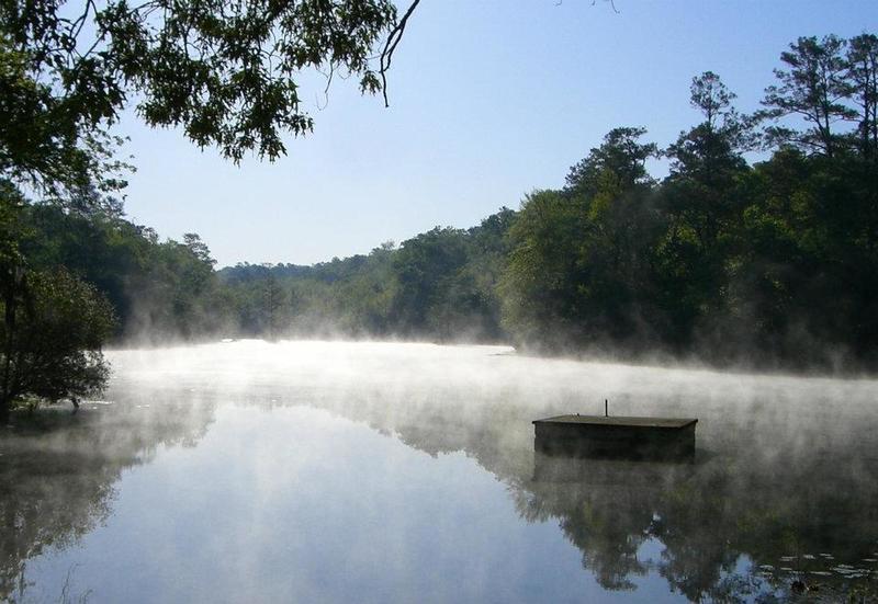 Old Levi Mill Pond.