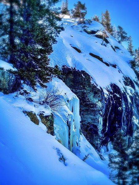 Along the Emerald Lake Trail, December 30, 2019.