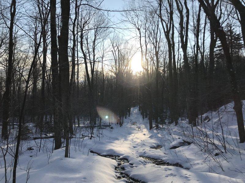 A snowy morning path.