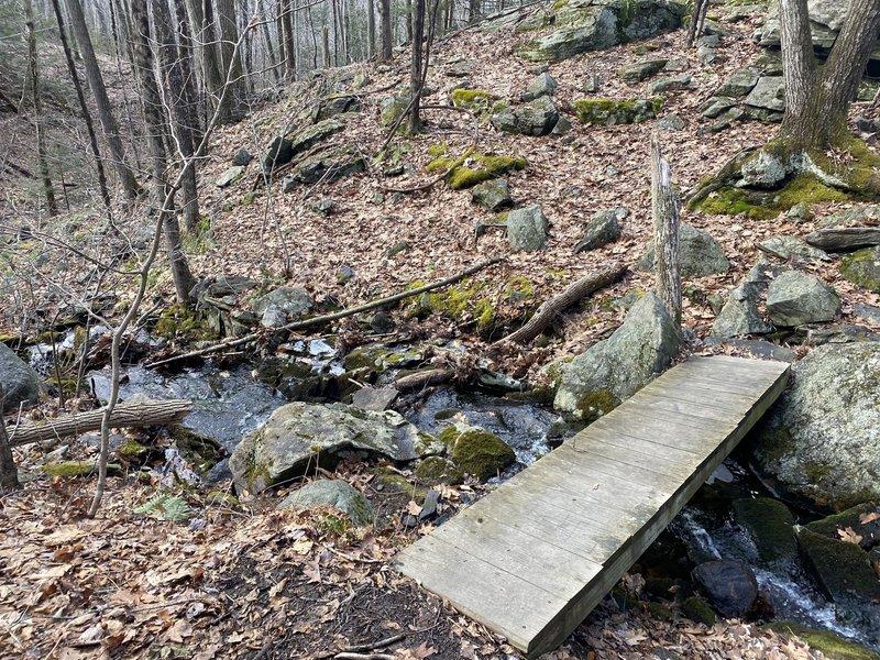 Foot bridge along the path