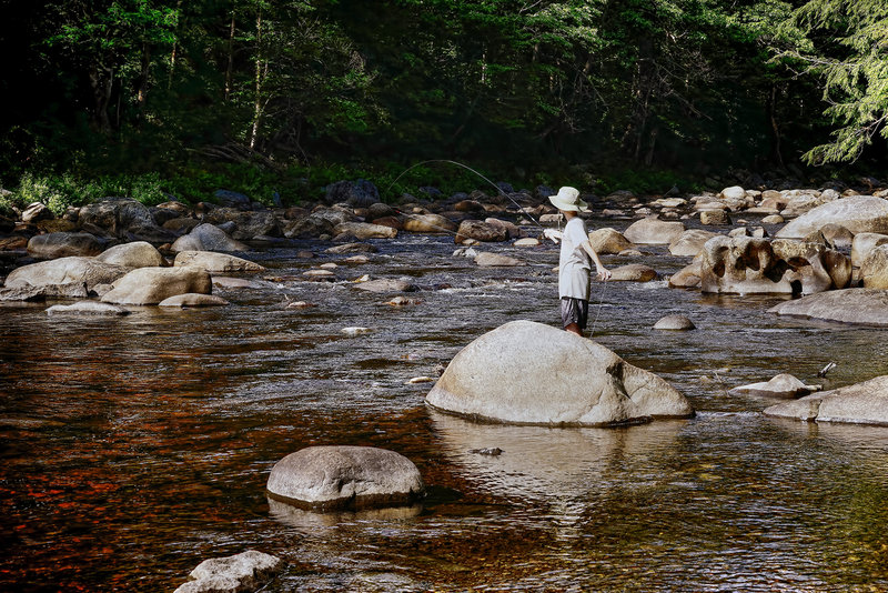 """The """"bow and arrow"""" cast at the confluence of the County Line Brook and East Branch of the Sacandaga River."""