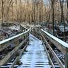 Bridge from Red Trail to Green/Beige Loop