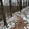 Narrow trail, beautiful hike